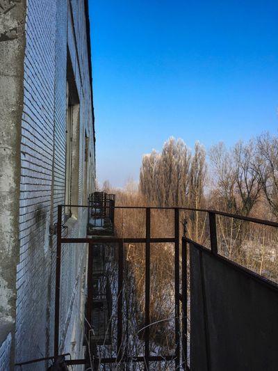 🌹✌🏼 Nature Abandoned Abandoned Places Abandoned Buildings Abandoned & Derelict Abandoned House Abandoned_junkies Abandonedplaces Abandonedbuilding Abandoned Building Abandonedplace EyeEmNewHere