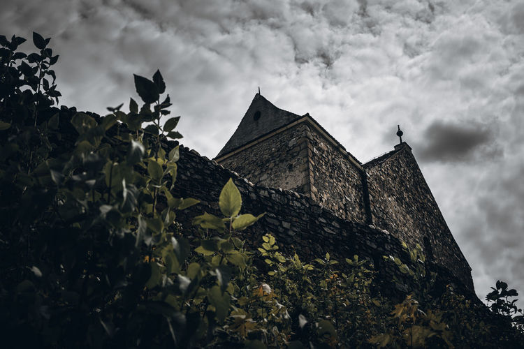 Hold On Strong Sky Architecture Built Structure Cloud - Sky Building Building Exterior Low Angle View Nature History The Past No People Plant Leaf Plant Part Outdoors Place Of Worship Day Castle Overcast Castle Fortress Old Vintage Histirical Mood Dark Nikon D7500 Sibiu Romania Europe Explore