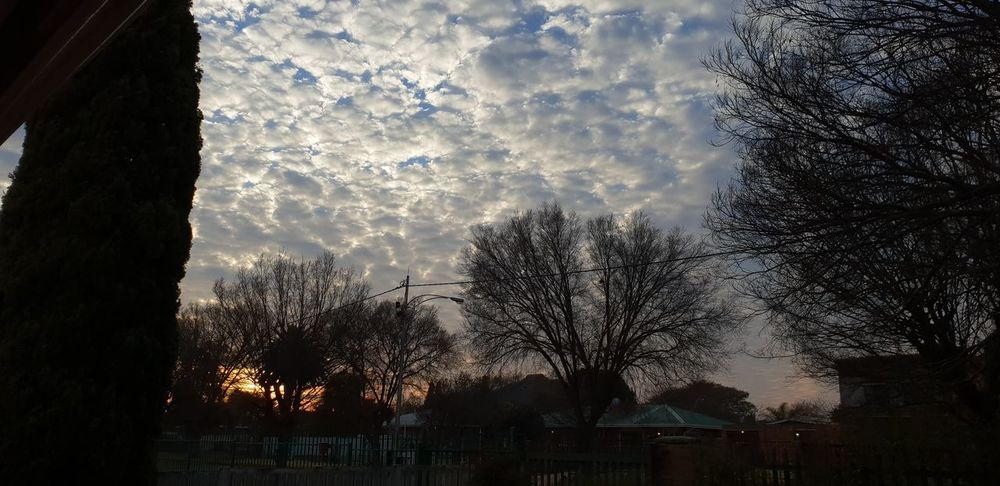 Sunrise over South Africa... Sunrise_Collection Sunrise And Clouds Sunrise Over South Africa 🇿🇦😊 Tree Silhouette City Sky Cloud - Sky