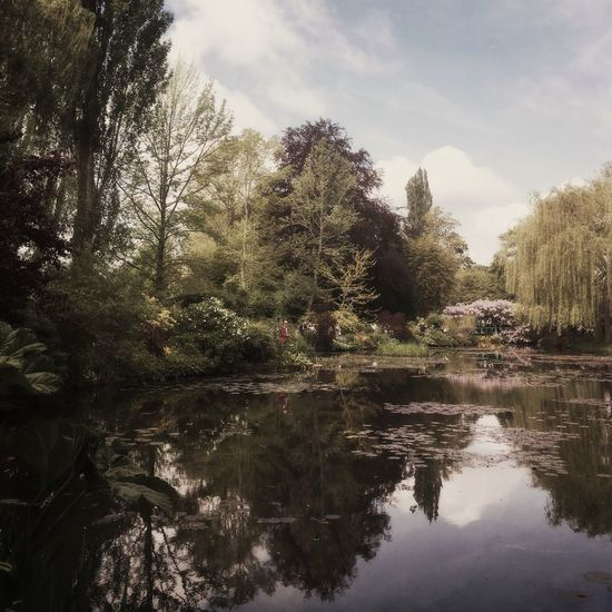 One of the most famous Garden in the world🌳 Countryside France EyeEm Best Shots EyeEm Nature Lover Hello World Taking Photos Monet House
