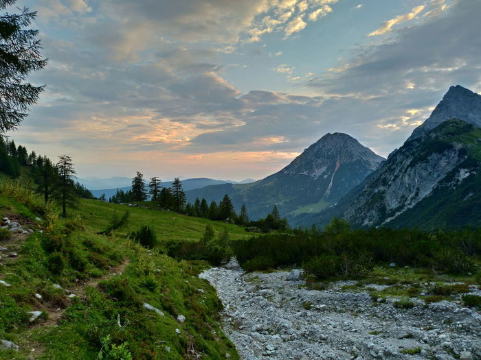 Hiking Austria Nature Mountains Alps Sunset Tree Forest Milky Way First Eyeem Photo