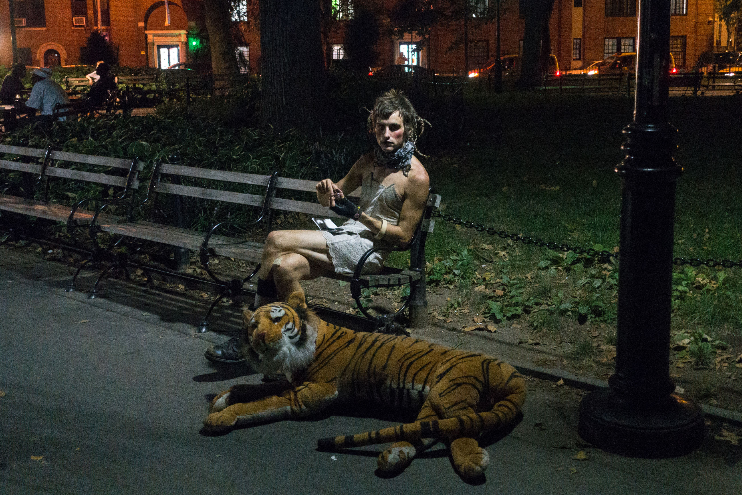 animal themes, one animal, outdoors, night, one person, full length, mammal, building exterior, tiger, domestic animals, city, young adult, people