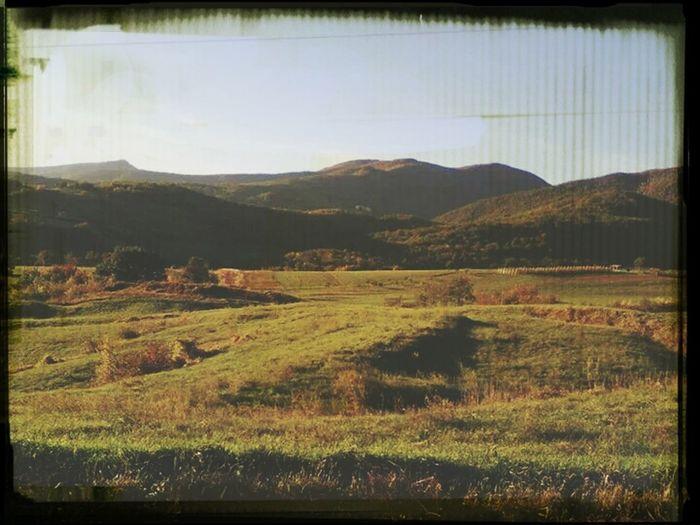 Nature Hills Enjoying The View