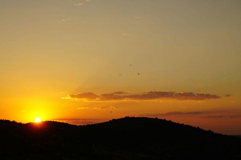 Sunset Nofilterneeded Skyonfire