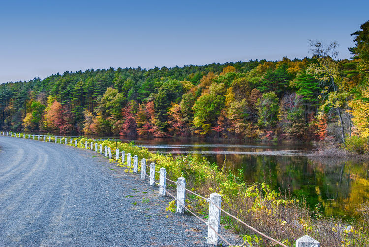 Ashley Resevoir Autumn Beauty In Nature Blue Clear Sky Copy Space Growth Holyoke MA Idyllic Lake Landscape Mountain Nature Non-urban Scene Road Scenics Sky The Way Forward Tranquil Scene Tranquility Tree Water