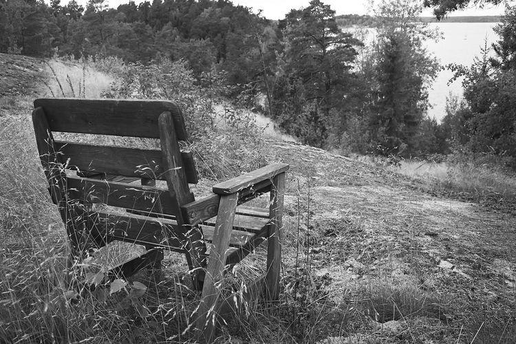 Plant Seat Land