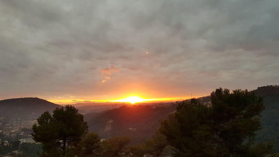 France 🇫🇷 Jphotography Jpho06 Anim-studio Nikon Nikon7100 Sunset Tree Dramatic Sky Cloud - Sky Landscape Sun Nature