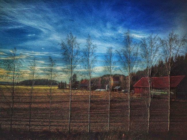 Sky No People Day Outdoors November Marraskuu Finland Suomi Landscape Architecture Barn
