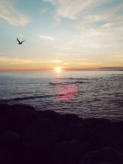 Coucher De Soleil Mer Beautiful Sky Bird Biätch Summer Natural Beauty Galicia Taking Photos Bretagne