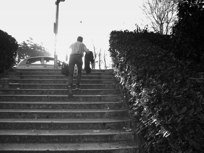 Rear view of people walking on steps