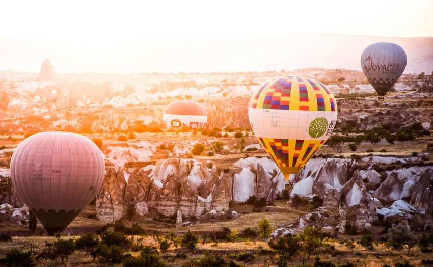 Cappadocia Hot Air Balloons Air Vehicle Ballooning Festival Day Dome Flying Hot Air Balloon Landscape Mid-air Mountain Nature No People Outdoors Rock Hoodoo Sky Sunrise Sunrise_sunsets_aroundworld Transportation Tree