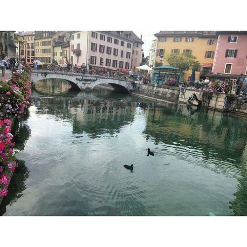 سويسرا انسي سفر Switzerland annecy vacation france فرنسا