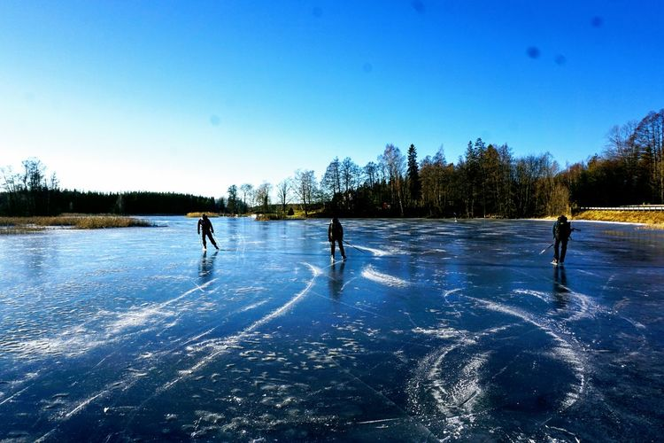 Trösken Ice Skating Tracks Ice Winter Sport Lake Blue People Togetherness Competitive Sport