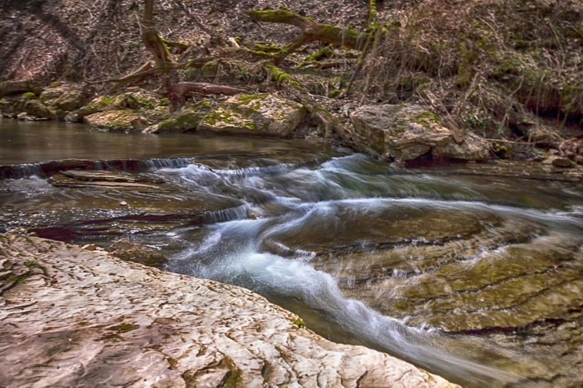 Shallow flowing Creek in the middle of a heavily wooded part of Cedar Creek Park in Belle Vernon, PA. Water Tree River Forest Waterfall Landscape Flowing Water Stream - Flowing Water Long Exposure Rock - Object Entertainment Falling Water Flowing Lush - Description Rapid Moss Stream Algae