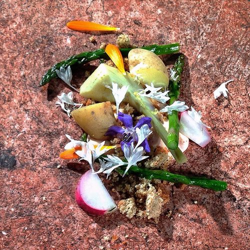Edible landscapes from Chef Katie Weinner. Tastes of spring. Cooking Food Cookingdemo Tasteofspring