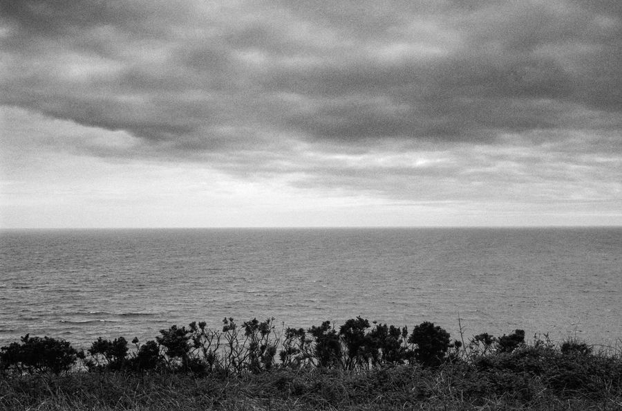 Beauty In Nature Blackandwhite Cloud - Sky Coastline Day Film Photography Grass Horizon Over Water Idyllic Langland Bay Nature No People Non Urban Scene Non-urban Scene Outdoors Plant Remote Scenics Sea Seascape Sky Tranquil Scene Tranquility Wales Water