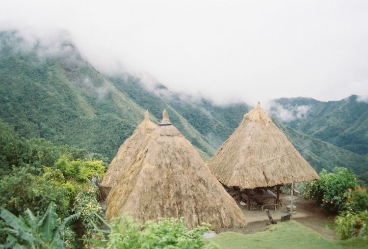 Travel and see these native houses in Batad, Philippines.. Intothewild Travel Photography Travelphotography Film Photography Beautiful Film Nikonfm  Traveling Wanderlust Lonetraveller Voyager Viajero Nofilter Itsmorefuninthephilippines Kodak Colorplus200