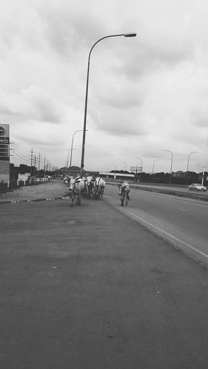 Cattle Run Outdoors VSCO Vscocam Vscoartist Vsconigeria Vscodaily Taking A Stroll Samsung Galaxy S6 Edge Samsungphotography Vix3nArt Nigerian Photography Lost In The Landscape