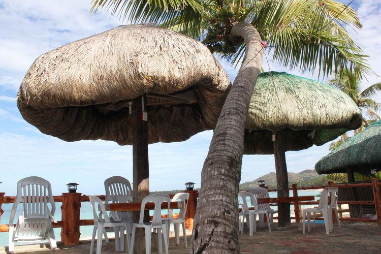 Beach Beach View Clear Sky Cloud - Sky Coconut Tree Day Empty Chairs Nature Nipa Hut Nipa Huts By The Shore No People Outdoors Palm Tree Sky