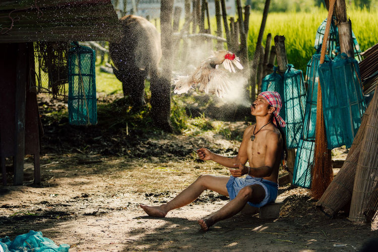 Rural farmer with chicken at countryside,Thailand.The lifestyle of farmer and chickens is a pet in farmland. Adult Beautiful Woman Clothing Day Fashion Full Length Hair Hairstyle Land Nature One Person Outdoors Plant Real People Shirtless Shorts Sitting Tree Women Young Adult Young Women