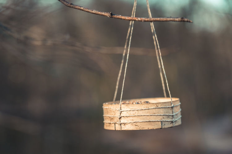 Wooden bowl with birdseeds hanging from a tree, with public park in background Hanging Close-up Wood - Material Focus On Foreground No People Day Food And Drink Selective Focus Still Life Container Basket Food Nature Brown Tied Up Indoors  Table String Bamboo - Material Stick - Plant Part