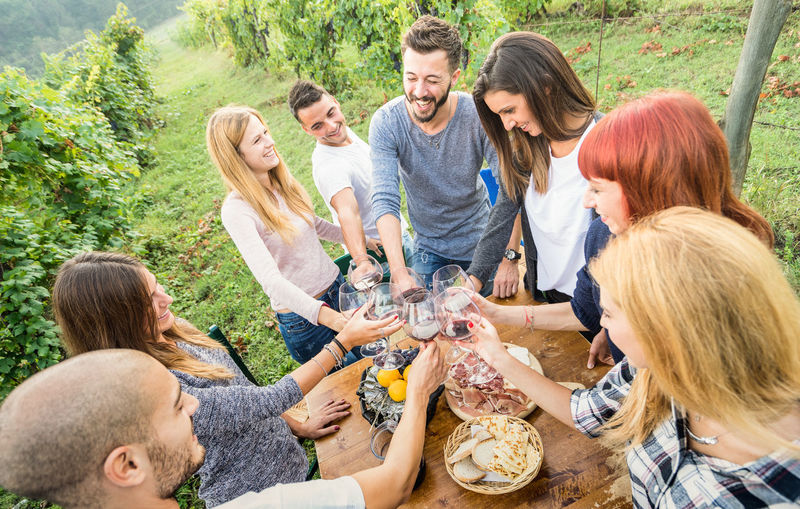 High Angle View Of Friends Raising Toast While Standing At Vineyard