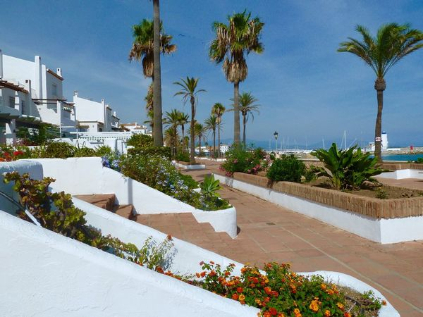SPAIN Puerto De La Duquesa - Manilva Duquesa Palm Tree Swimming Pool Tourist Resort Luxury Hotel Luxury Hotel Architecture Tropical Climate Vacations Tree Outdoors Day Built Structure Beauty In Nature No People Nature Building Exterior Sky Water Blue