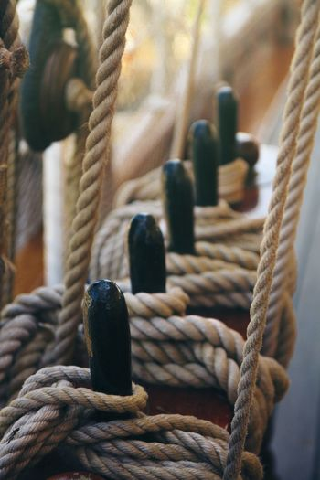 Close-up of rope tied on sailboat