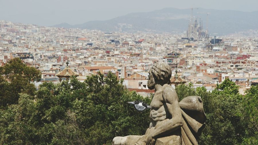 Sculpture , Pidgeon  and Barcelona view. Catalunya . Sony A350 High Angle View Panorama Panoramic Sagrada Familia Cathedral City Cityscape Tourist Attraction  Historic Site Tourist Destination Monuments Perspective Tourism View Cityscapes City Landscape Eyeemphoto