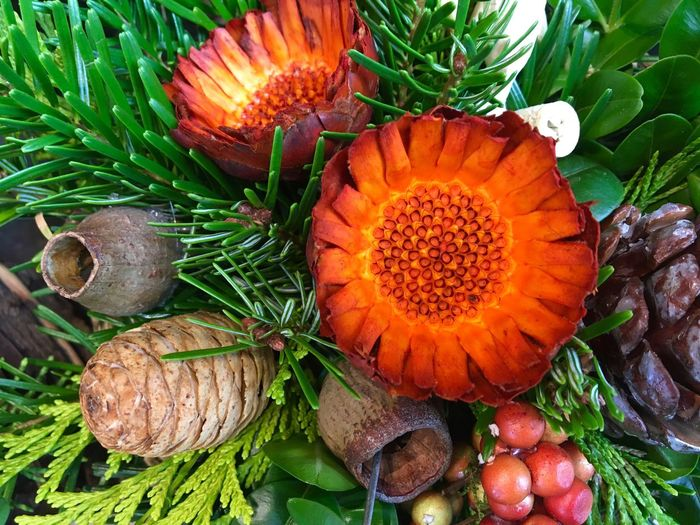 Orange Color High Angle View Green Color Close-up Autumn Colors Autumn Collection Autumn Bouquet Winter Bouquet Flower Arrangement Pine Branch Pine Cone Autumn Flowers Seasonal Decorations All Saints' Day