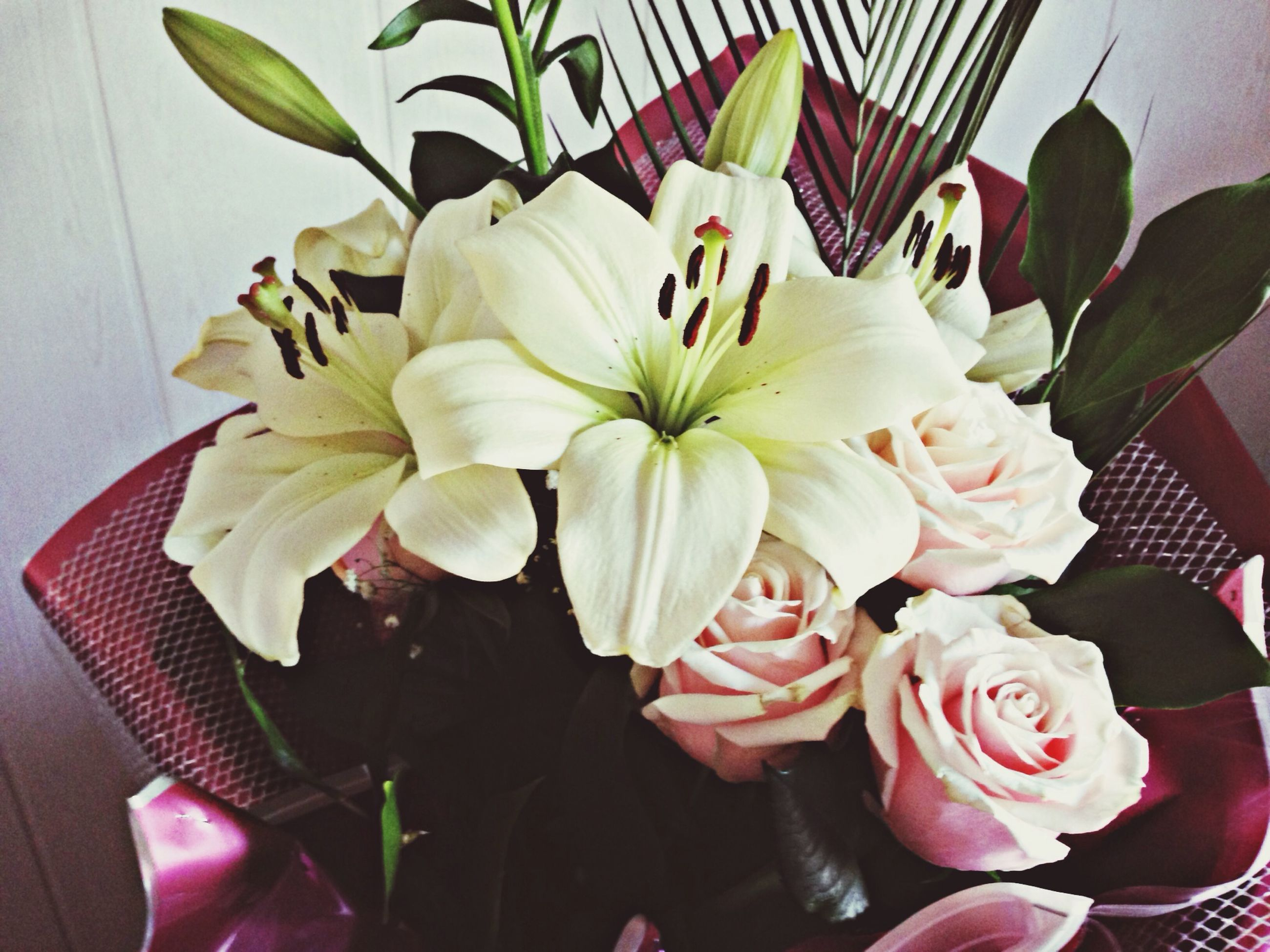 flower, petal, freshness, fragility, flower head, growth, beauty in nature, indoors, white color, leaf, close-up, nature, blooming, plant, high angle view, pink color, blossom, no people, in bloom, vase