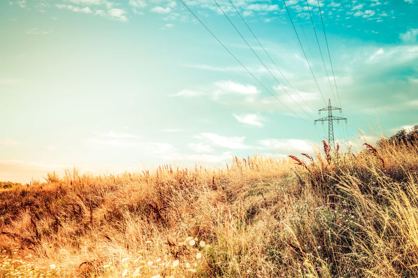 Beauty In Nature Cable Cloud - Sky Connection Day Electricity  Electricity Pylon Field Fuel And Power Generation Grass Growth Landscape Nature No People Outdoors Power Line  Power Supply Rural Scene Sky Technology