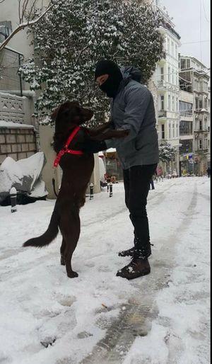 Winter Galata Tower Turkey Istanbul Turkey Adult Handsome Add Me Dog Hi! Dog Love That's Me Higirls Handsome.... :) Sexyboy ıstanbul, Turkey Kik Me :) Winter Time Snow ❄