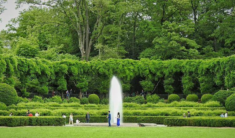 Central Park New York City Manhattan New York Green Color Real People Large Group Of People Enjoyment Leisure Activity Men Outdoors