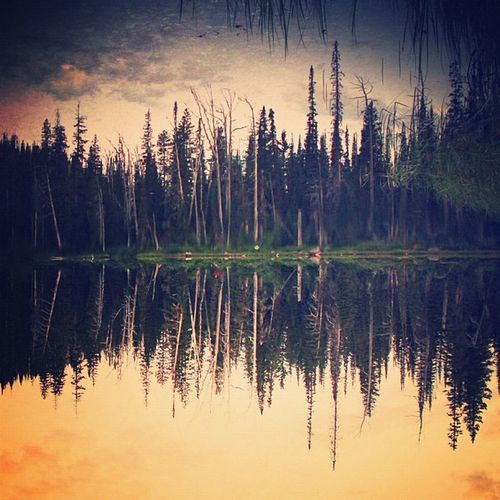 Montana downside-up. #igersmontana #lake Lake Igersmontana Allshots_sep12_forest Jj_forum_0471 Jj_forum_0394 Jj_forum_0414
