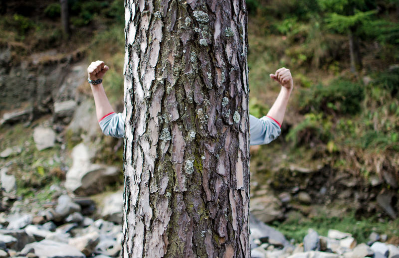 Man with arms raised in tree trunk