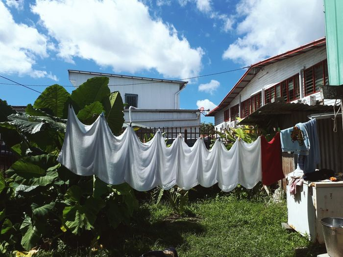 Sunny Day Green Living Eco Friendly Reusable Diaper Nappies Island Life Tropical Climate Tropical Living Drying Hanging Clothesline Laundry Clothespin Sky Cloud - Sky Building Exterior Clothes Roof TOWNSCAPE Washing Housing Settlement Yard