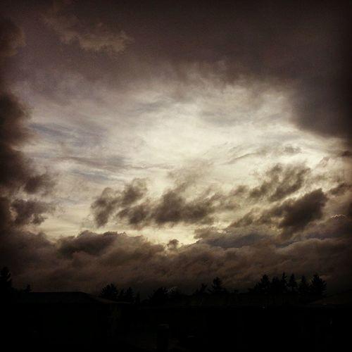 Uul Cloud , Bellevue