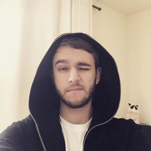 Zedd Handsome Man People Like