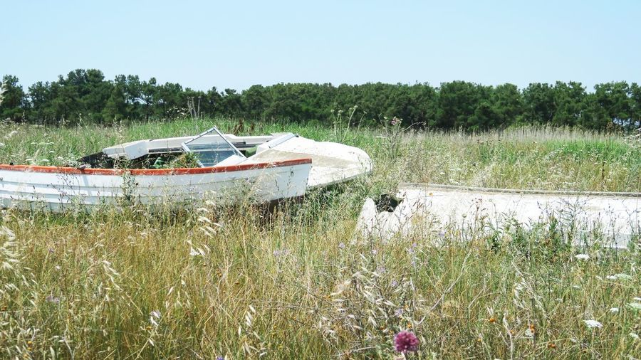 broken and abandoned boats in nea plagia, greece White Boat Boat Abandoned Broken Nea Plagia Greece Grass Sport Boat Damaged
