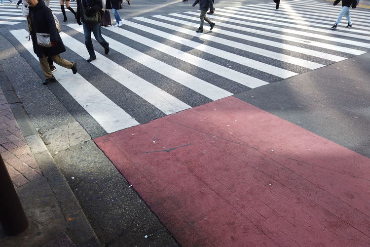 Morning Morning Light People Urban Walking Japan Shibuya Shibuya Crossing Intersection Business Finance And Industry Business Walking Around City Cityscape Street Tokyo Group Of People Road Marking Crosswalk Real People Crossing Low Section Road Zebra Crossing Human Leg Human Body Part Day Transportation Sign Marking Symbol Women Body Part Outdoors Human Foot Human Limb