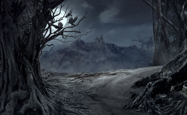Dead cliff road on the dead mysterious forest with three crows on the night. Scary Halloween concept. Dark Evil Fear Halloween Horror Moon Tree Wood Beauty In Nature Blackandwhite Crows Dangerous Day Dead Evening Forest Mist Mood Moonlight Mountain Mystery Nature Night Nightmare No People Outdoors Roots Of Tree Scary Shadow Sky Spooky Tree
