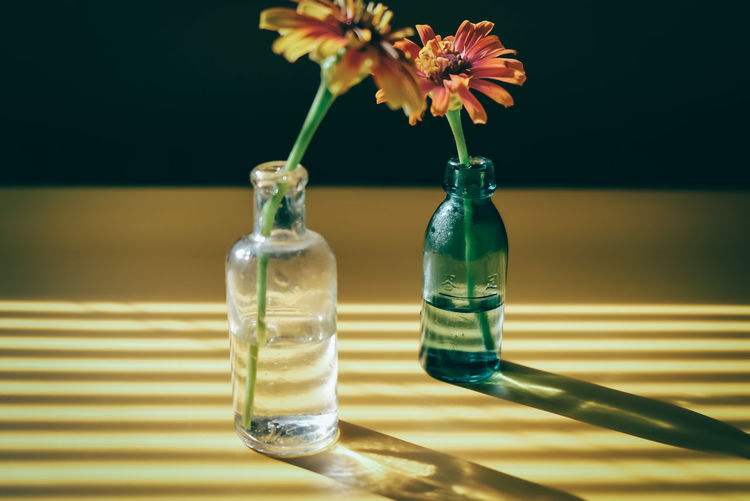 Close-up of flower in glass vase on table