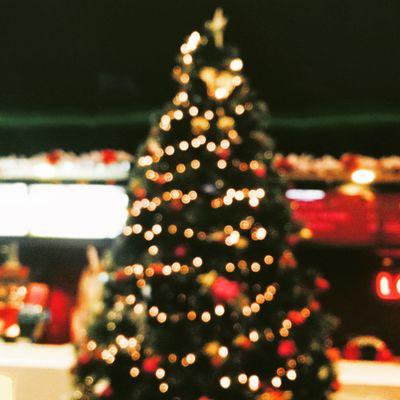 Christmas Christmas Tree Christmas Lights Merry Christmas! Bokeh Light