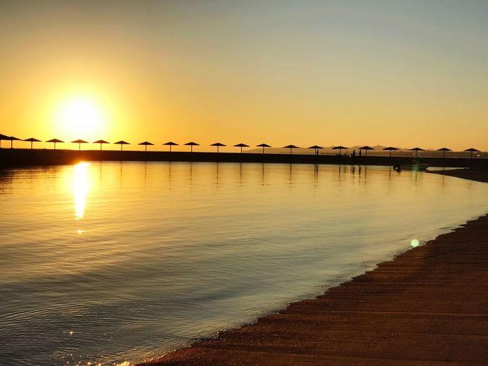 Hurghada Wait For The Right Moment Hurgada, Egypt Egipt Scenics Nature Beauty In Nature