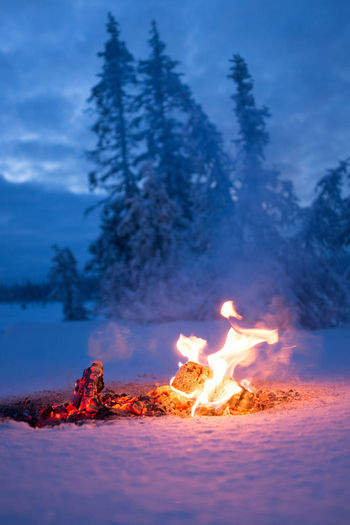 Beauty In Nature Burning Campfire Clouds And Sky Fire Fire And Flames Fire And Ice Fire And Ice Photography Fire And Smoke Flame Glowing Mountain Mountain Range Smoke Snow Snow Day Snow ❄ Winter Winter Trees Winter Wonderland Winterscapes Wintertime Winterwonderland Camp Showcase: January