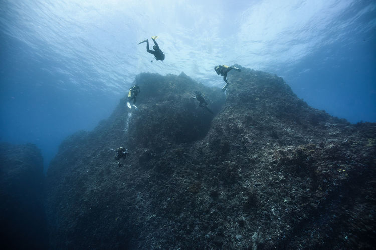 Close-Up Of Scuba Divers Undersea