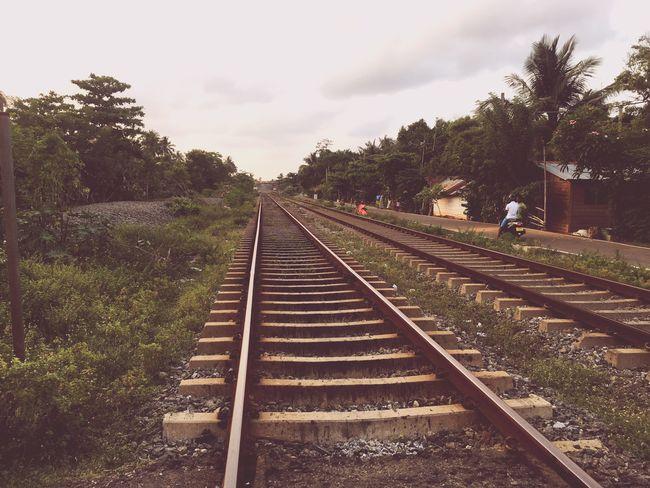 スリランカの鉄道線路。のどかな雰囲気満載。 スリランカ 線路 鉄道 Sri Lanka Srilankatravel SriLanka 海外旅行 海外 Railway Railway Track