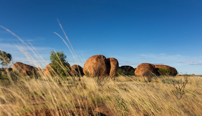 Sunset at the Devils Marbles, Australia. Incredible atmosphere between those unreal rock formations. They look as if they are burning in the sunlight. Beauty In Nature Blue Bushes And Trees Day Devils Marbles Grass Karlu Karlu Landscape Nature No People Outback Outdoors Rock - Object Rock Formation Scenics Sky Stones Tranquil Scene Tranquility
