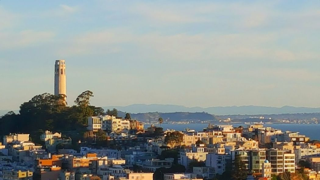 Hanging Out Showcase: February Hello World Enjoying Life Travel Photography Unfiltered Coit Tower View Urban Landscape Tourist Attraction  Bayarea